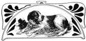 zobrazí detail - Canis Media BC0218