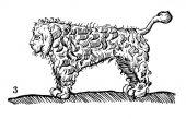 zobrazí detail - Canis Media BC0637