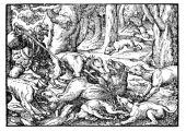 zobrazí detail - Canis Media BC0744